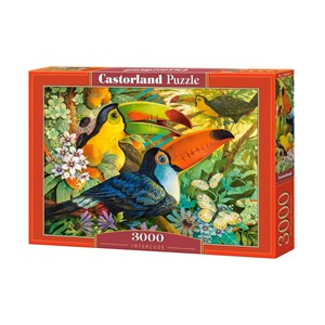 "Castorland (C-300433) - David Galchutt: ""Interlude"" - 3000 pieces puzzle"