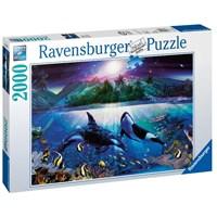 """Ravensburger (16661) - """"Graceful Killer Whales"""" - 2000 pieces puzzle"""