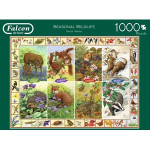 "Falcon (11200) - Sarah Adams: ""Seasonal Wildlife"" - 1000 pieces puzzle"