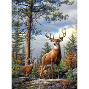 """Buffalo Games (11155) - Hautman Brothers: """"Standing Proud"""" - 1000 pieces puzzle"""