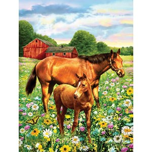 """SunsOut (37174) - Greg Giordano: """"Mare and Foal"""" - 500 pieces puzzle"""