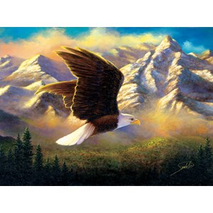 """SunsOut (69636) - Abraham Hunter: """"Flying High"""" - 1000 pieces puzzle"""