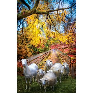 "SunsOut (30136) - Celebrate Life Gallery: ""Sheep Crossing"" - 550 pieces puzzle"