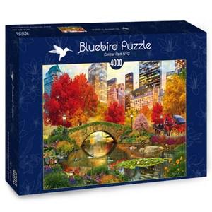 """Bluebird Puzzle (70256) - David McLean: """"Central Park NYC"""" - 4000 pieces puzzle"""