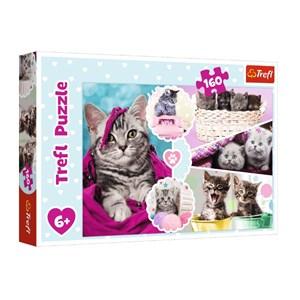 "Trefl (15371) - ""Kittens"" - 160 pieces puzzle"