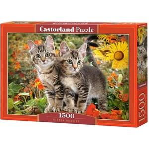"""Castorland (C-151899) - """"Kitten Buddies"""" - 1500 pieces puzzle"""