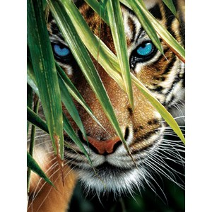 "SunsOut (21843) - Colin Bogle: ""Blue Eyes"" - 1000 pieces puzzle"