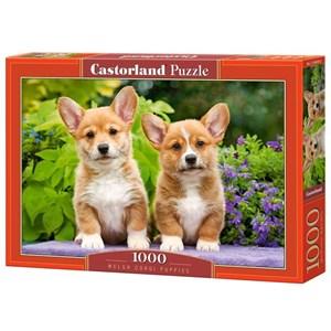 """Castorland (C-104659) - """"Welsh Corgi Puppies"""" - 1000 pieces puzzle"""