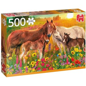"Jumbo (18851) - ""Horses in the Meadow"" - 500 pieces puzzle"