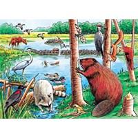 """Cobble Hill (58802) - """"The Beaver Pond"""" - 35 pieces puzzle"""