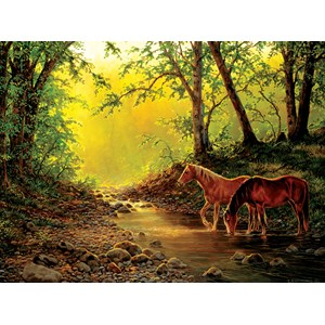 """SunsOut (48851) - Chris Cummings: """"Still Water Setting"""" - 1000 pieces puzzle"""