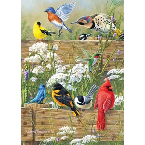 "Buffalo Games (2496) - James Hautman: ""Songbird Menagerie"" - 300 pieces puzzle"