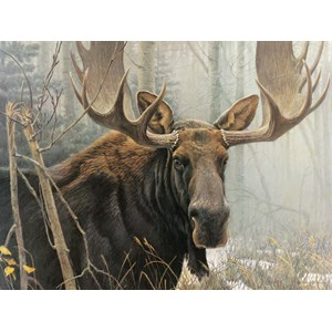 "Cobble Hill (52080) - Robert Bateman: ""Bull Moose"" - 500 pieces puzzle"