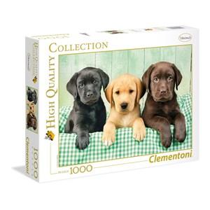 "Clementoni (39279) - Greg Cuddiford: ""Three Labs"" - 1000 pieces puzzle"